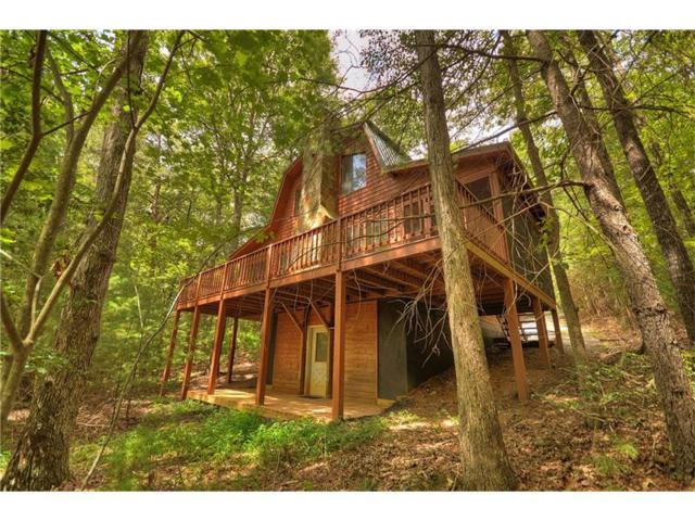 354 Blackberry Mtn Drive, Ellijay, GA 30540 (MLS #5904014) :: North Atlanta Home Team