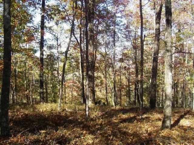 968 Raccoon Ridge Road, Ranger, GA 30734 (MLS #5906052) :: North Atlanta Home Team