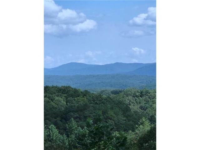 221 Deerfield Lane, Blue Ridge, GA 30513 (MLS #5908157) :: North Atlanta Home Team