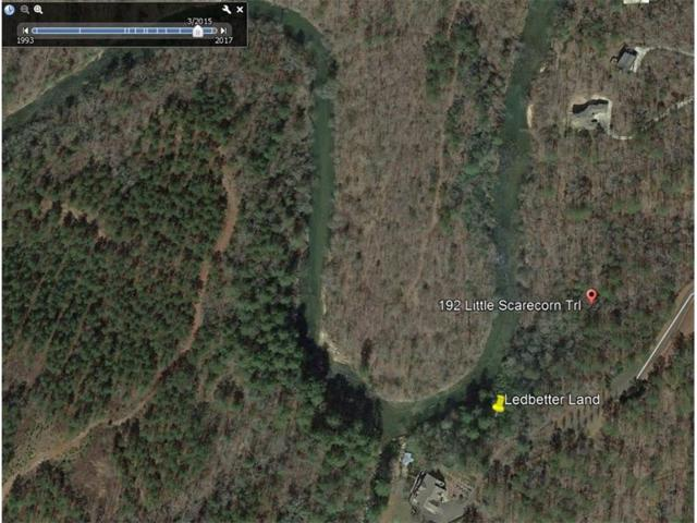 192 Little Scarecorn Trail, Talking Rock, GA 30175 (MLS #5909000) :: North Atlanta Home Team