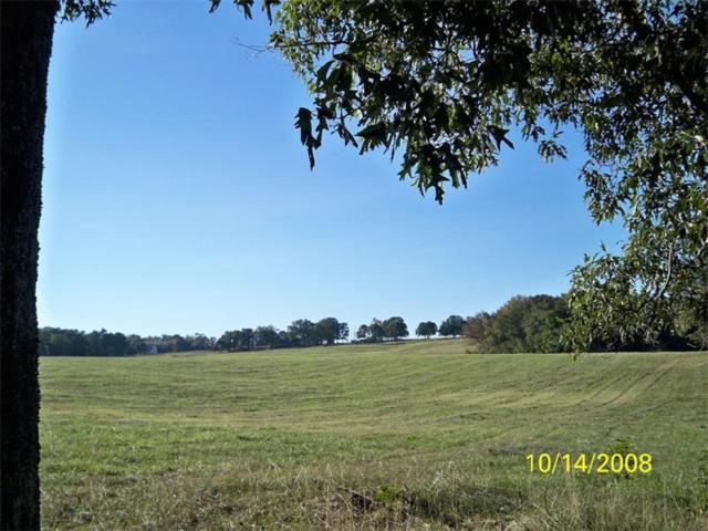 2870 Freemans Mill Road, Dacula, GA 30019 (MLS #5909481) :: North Atlanta Home Team
