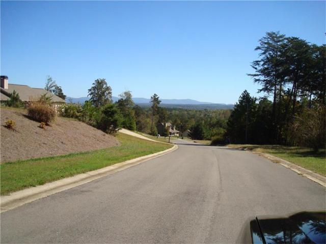 152 Black Knob Falls Drive, Ranger, GA 30734 (MLS #5913741) :: North Atlanta Home Team