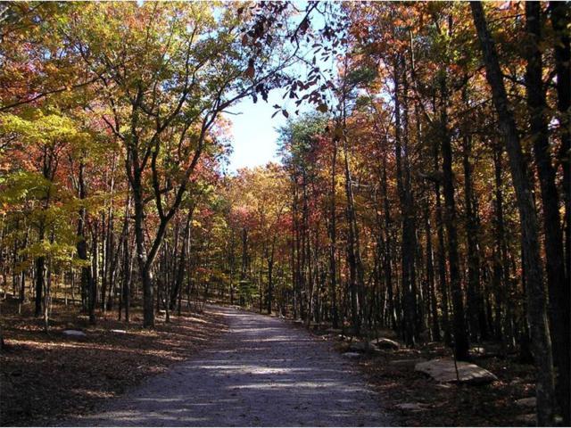201 Mystic Trail, Jasper, GA 30143 (MLS #5918434) :: North Atlanta Home Team