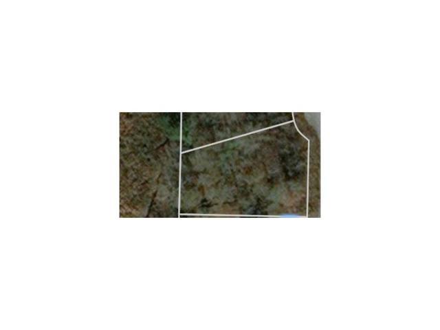3923 Old Ivy Court, Ellenwood, GA 30294 (MLS #5926201) :: The Bolt Group