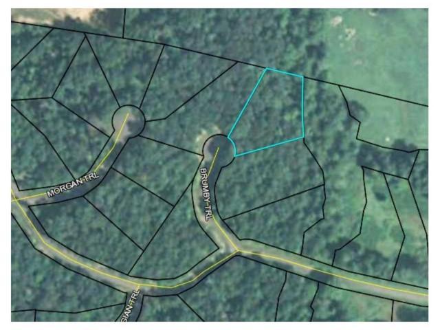 8 Brumby Trail, Ellijay, GA 30540 (MLS #5926958) :: Carr Real Estate Experts