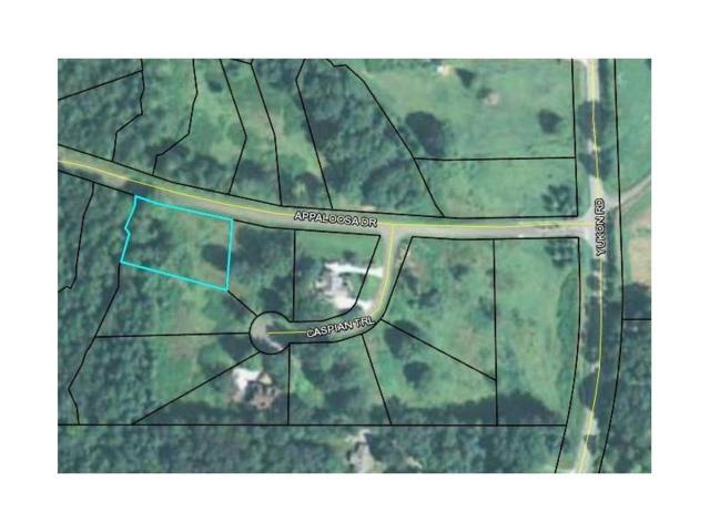 45 Appaloosa Drive, Ellijay, GA 30540 (MLS #5927007) :: Carr Real Estate Experts