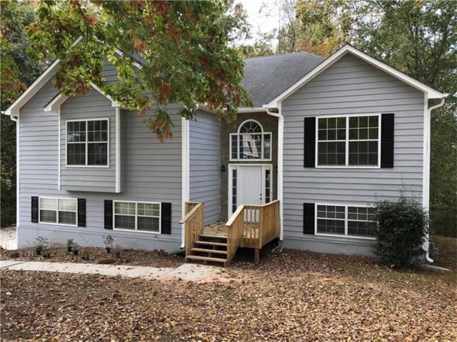 4047 Greentree Court, Douglasville, GA 30135 (MLS #5930009) :: North Atlanta Home Team