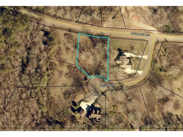 46 Appaloosa Drive, Ellijay, GA 30540 (MLS #5931658) :: Carr Real Estate Experts