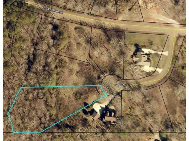 49 Caspian Trail, Ellijay, GA 30540 (MLS #5931679) :: Carr Real Estate Experts