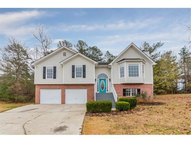 250 Glory Lane, Powder Springs, GA 30127 (MLS #5941008) :: Kennesaw Life Real Estate