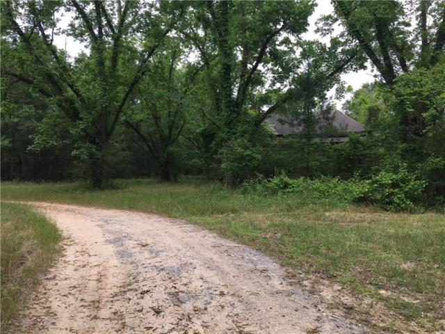 282 Hickory Drive, Roberta, GA 31078 (MLS #5953646) :: The Cowan Connection Team