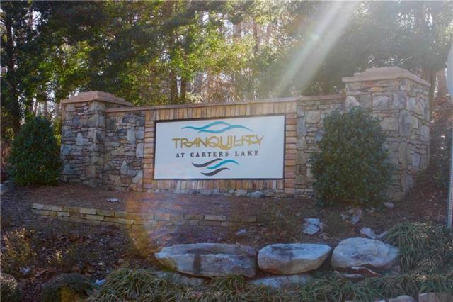 0 Tumbling Waters Lane, Ellijay, GA 30540 (MLS #5955250) :: Carr Real Estate Experts