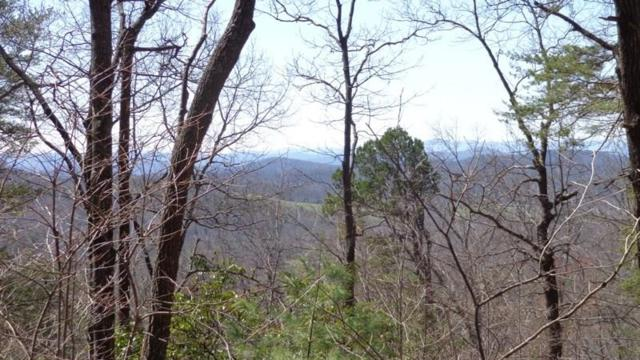 Lot 6 Wrens Ridge Circle, Dahlonega, GA 30533 (MLS #5968234) :: The Bolt Group