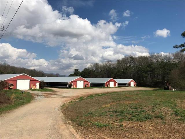 559 Clear Creek Road, Ellijay, GA 30536 (MLS #5969646) :: Charlie Ballard Real Estate