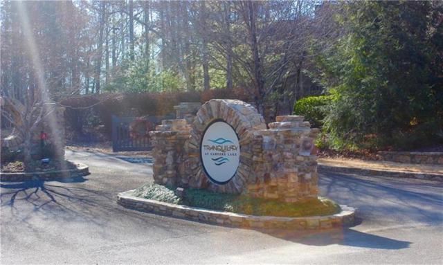 0 Lot 256 Carters View Drive, Ellijay, GA 30540 (MLS #5970770) :: Carr Real Estate Experts