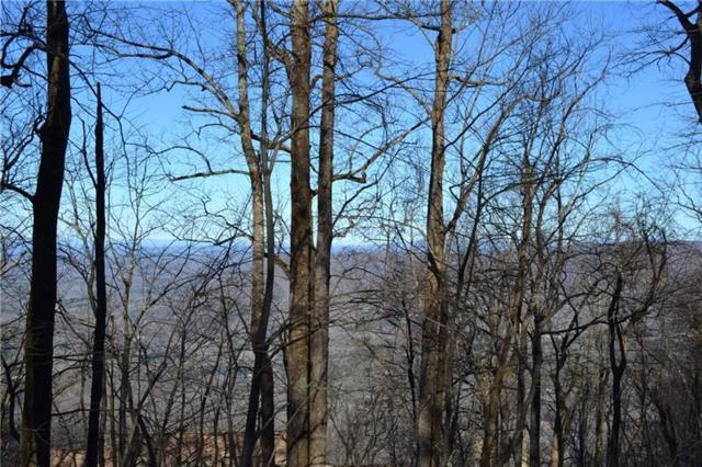 1906 Big Stump Mountian Trail, Jasper, GA 30143 (MLS #5973343) :: The Zac Team @ RE/MAX Metro Atlanta