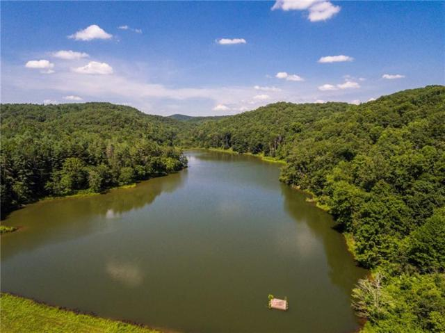 Lot 6 Meadowlands Drive, Talking Rock, GA 30175 (MLS #5973739) :: Kennesaw Life Real Estate
