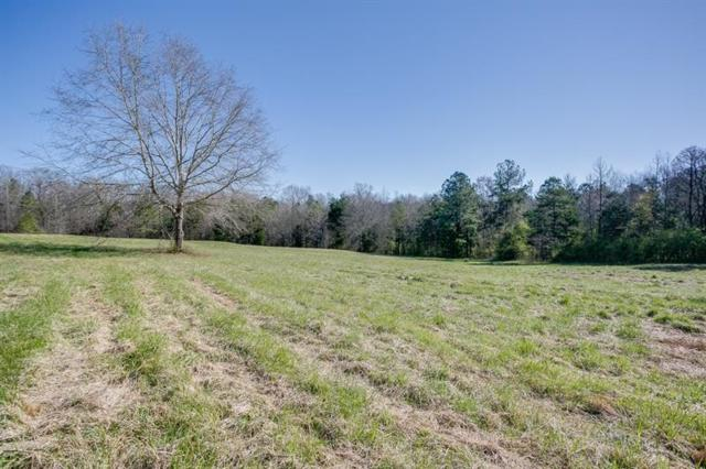 0000 Highway 51 N, Carnesville, GA 30521 (MLS #5980696) :: Carr Real Estate Experts