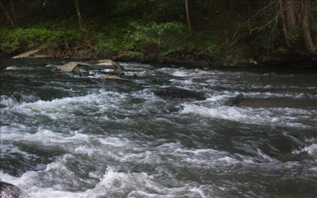 0 River Edge, Ellijay, GA 30540 (MLS #5983982) :: Dillard and Company Realty Group