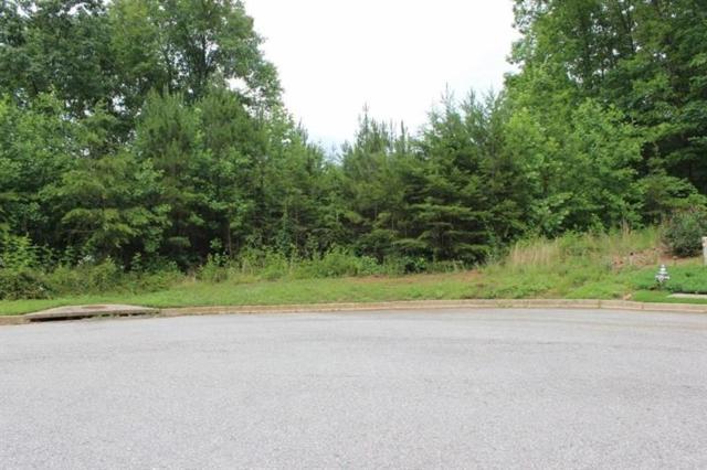 149 Black Oak Lane, Dawsonville, GA 30534 (MLS #5987413) :: The Bolt Group