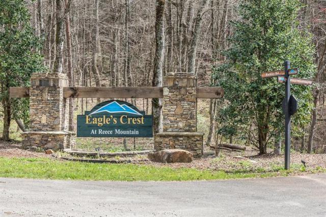 64 Reece Mountain Road, Ellijay, GA 30540 (MLS #5989448) :: RE/MAX Paramount Properties