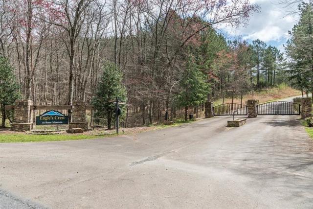 63 Reece Mountain, Ellijay, GA 30540 (MLS #5989466) :: RE/MAX Paramount Properties