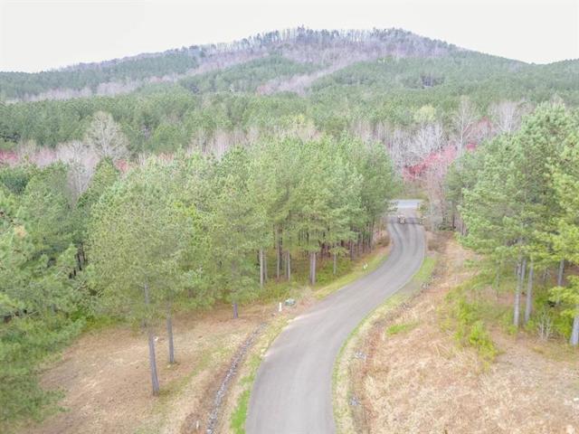 1 Reece Mountain Road, Ellijay, GA 30540 (MLS #5989478) :: RE/MAX Paramount Properties