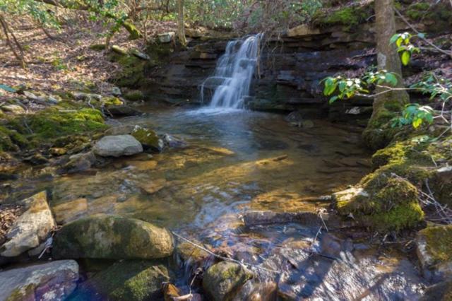 11 Highlands Forest, Cloudland, GA 30731 (MLS #5991955) :: The Cowan Connection Team