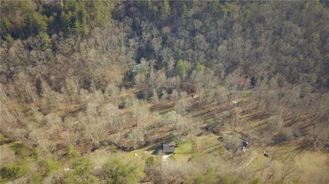 Lot30 Briar Creek, Ellijay, GA 30540 (MLS #5996687) :: The Bolt Group
