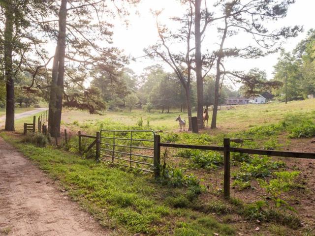 1093 Wiley Bridge Road, Woodstock, GA 30188 (MLS #5996818) :: Carr Real Estate Experts
