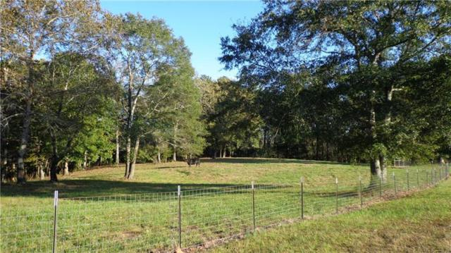 1500 Trail Of Tears Trail, Ball Ground, GA 30107 (MLS #5998742) :: Carr Real Estate Experts