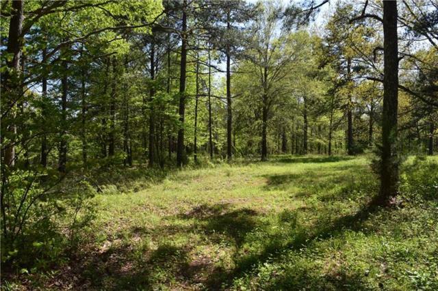 0 Sanders Cemetery Road, Cedartown, GA 30125 (MLS #5999815) :: Carr Real Estate Experts