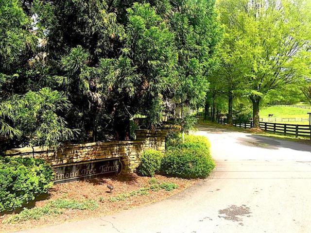 160 Allmond Lane, Alpharetta, GA 30004 (MLS #6001415) :: Buy Sell Live Atlanta
