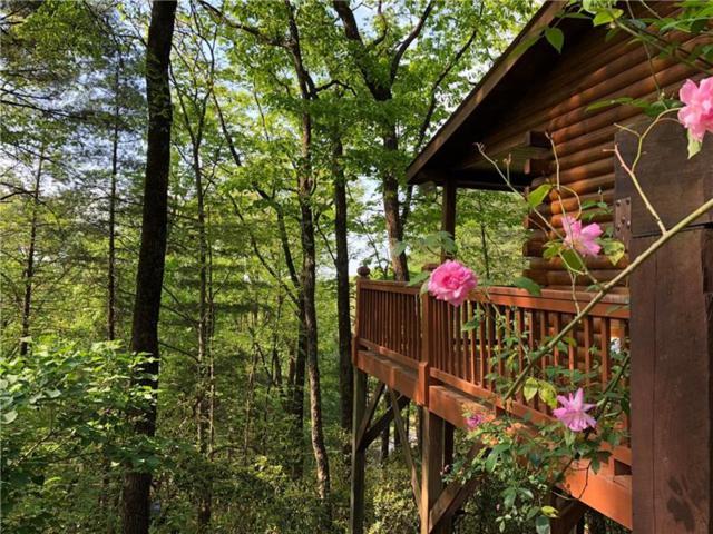 55 Mountain View Road, Ellijay, GA 30540 (MLS #6008854) :: RE/MAX Paramount Properties
