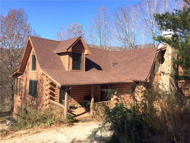 120 Mathieson Point, Jasper, GA 30143 (MLS #6009521) :: The North Georgia Group