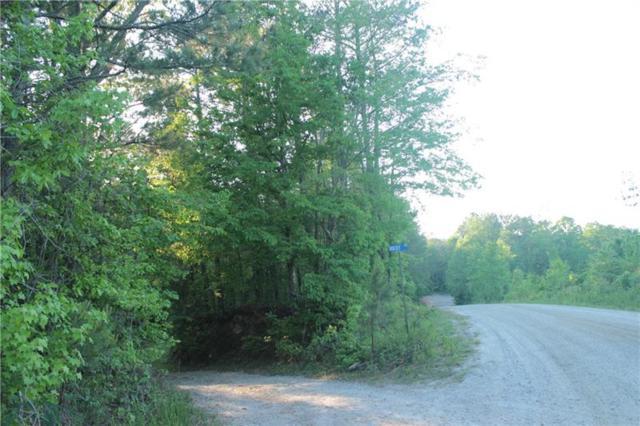 25 Rocky Road, Dawsonville, GA 30534 (MLS #6011028) :: The Bolt Group