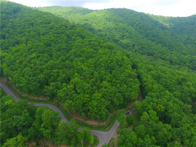 69 Chief  Whitetails Road, Ellijay, GA 30540 (MLS #6015164) :: The Cowan Connection Team