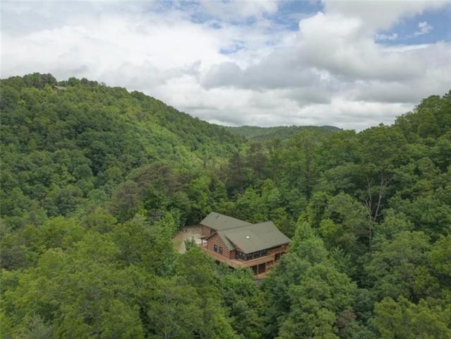 293 Green Bower, Clayton, GA 30525 (MLS #6017130) :: RE/MAX Paramount Properties