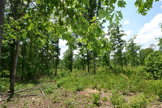Trt 3 Dean Trail, Talking Rock, GA 30175 (MLS #6020135) :: North Atlanta Home Team