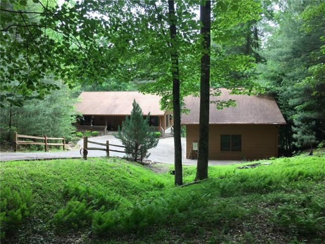 38 Alderwood Lane, Ellijay, GA 30536 (MLS #6025354) :: North Atlanta Home Team