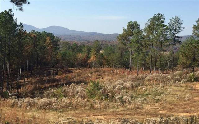 Lot160 Thirteen Hundred, Blairsville, GA 30512 (MLS #6025794) :: RE/MAX Paramount Properties