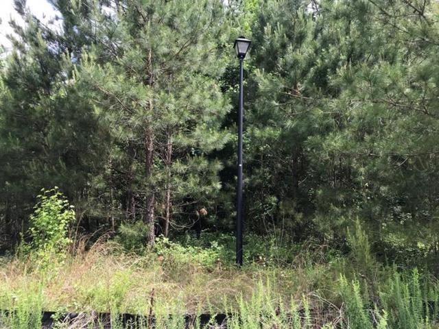 308 Sequoia Pointe, Carrollton, GA 30117 (MLS #6026752) :: The Cowan Connection Team