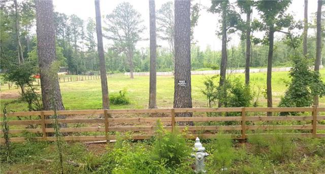 000 Conkle Road, Hampton, GA 30228 (MLS #6027986) :: North Atlanta Home Team