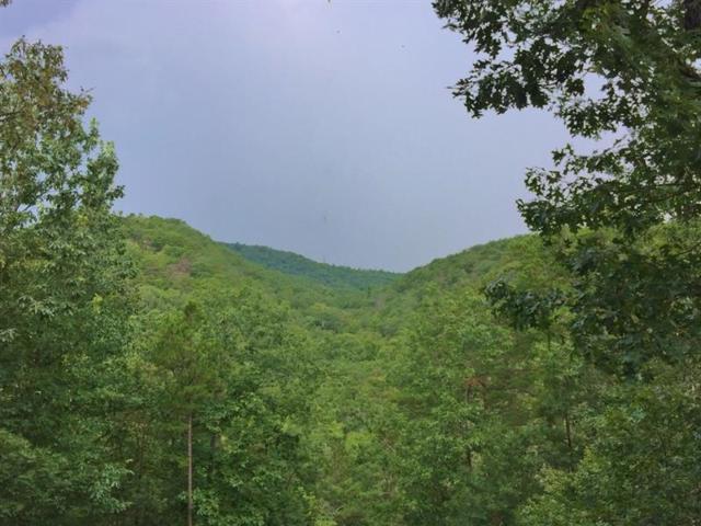 1403 Foxhound Trail NE, Ranger, GA 30734 (MLS #6030527) :: RCM Brokers