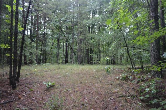 000 Pumping Station Road, Toccoa, GA 30577 (MLS #6034573) :: The Cowan Connection Team