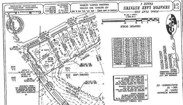 1119 Senator Road, Douglasville, GA 30134 (MLS #6036151) :: Path & Post Real Estate