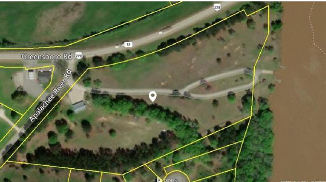 1010 Apalachee River, Madison, GA 30650 (MLS #6039835) :: RE/MAX Paramount Properties