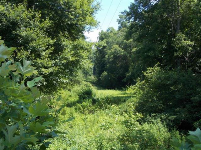 0 Camp Wahsega Road, Dahlonega, GA 30533 (MLS #6040467) :: RE/MAX Paramount Properties