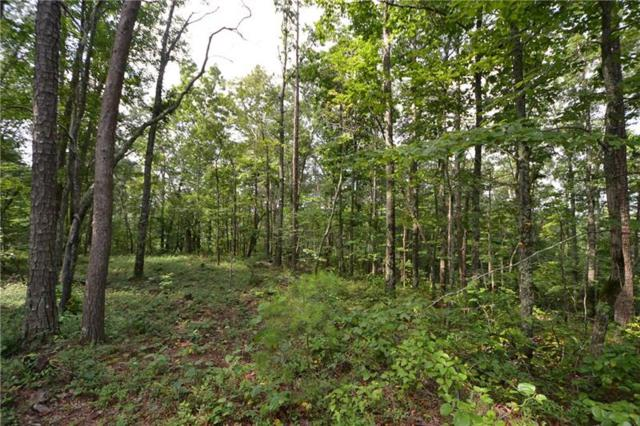 Lot 11 Meadowlands Drive, Talking Rock, GA 30175 (MLS #6040512) :: The Russell Group