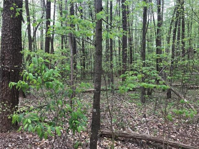 Tract2 S Cherokee Lane, Woodstock, GA 30188 (MLS #6042965) :: RE/MAX Paramount Properties
